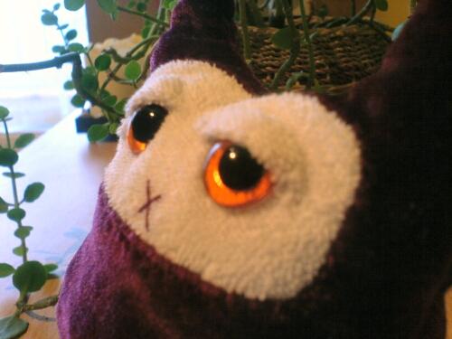TRI - Eyebone